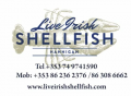 Hannigan Live Irish Shellfish