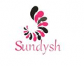 Guangzhou Sundysh E&F Accessories Co., Ltd.